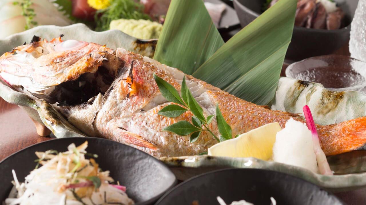 赤坂見附でお魚を堪能!宴会プランは3978円~
