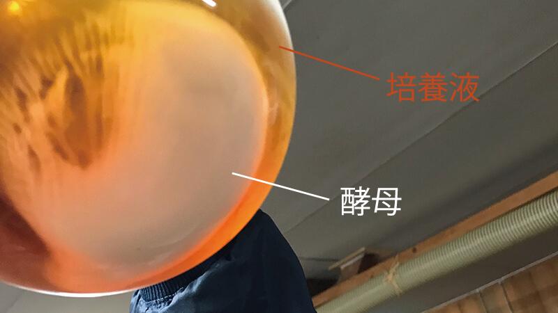 hiroshima_35