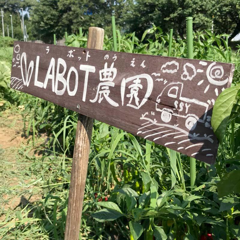 「LABOT農園」は環境にも優しい有機栽培