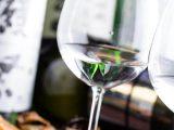 スタイリッシュに楽しむ!注目の次世代・日本酒6選~個室居酒屋 馬に魚に 赤坂見附店~