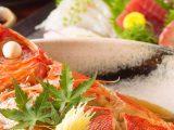 昼でも産直鮮魚と話題の串しゃぶ!ランチ宴会のススメ~赤坂見附 個室居酒屋 お魚に恋をして~
