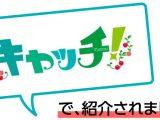 【メディア紹介】中京テレビ『キャッチ!』で紹介されました!~個室 肉バルVS魚バル DESIGN FOOD MARKET 名古屋駅店~