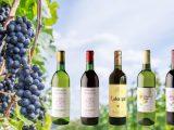 【2016】日本ワインが今美味い!「馬に魚に」で飲める世界が注目する日本ワイン5選 ~個室居酒屋 馬に魚に 赤坂見附店~